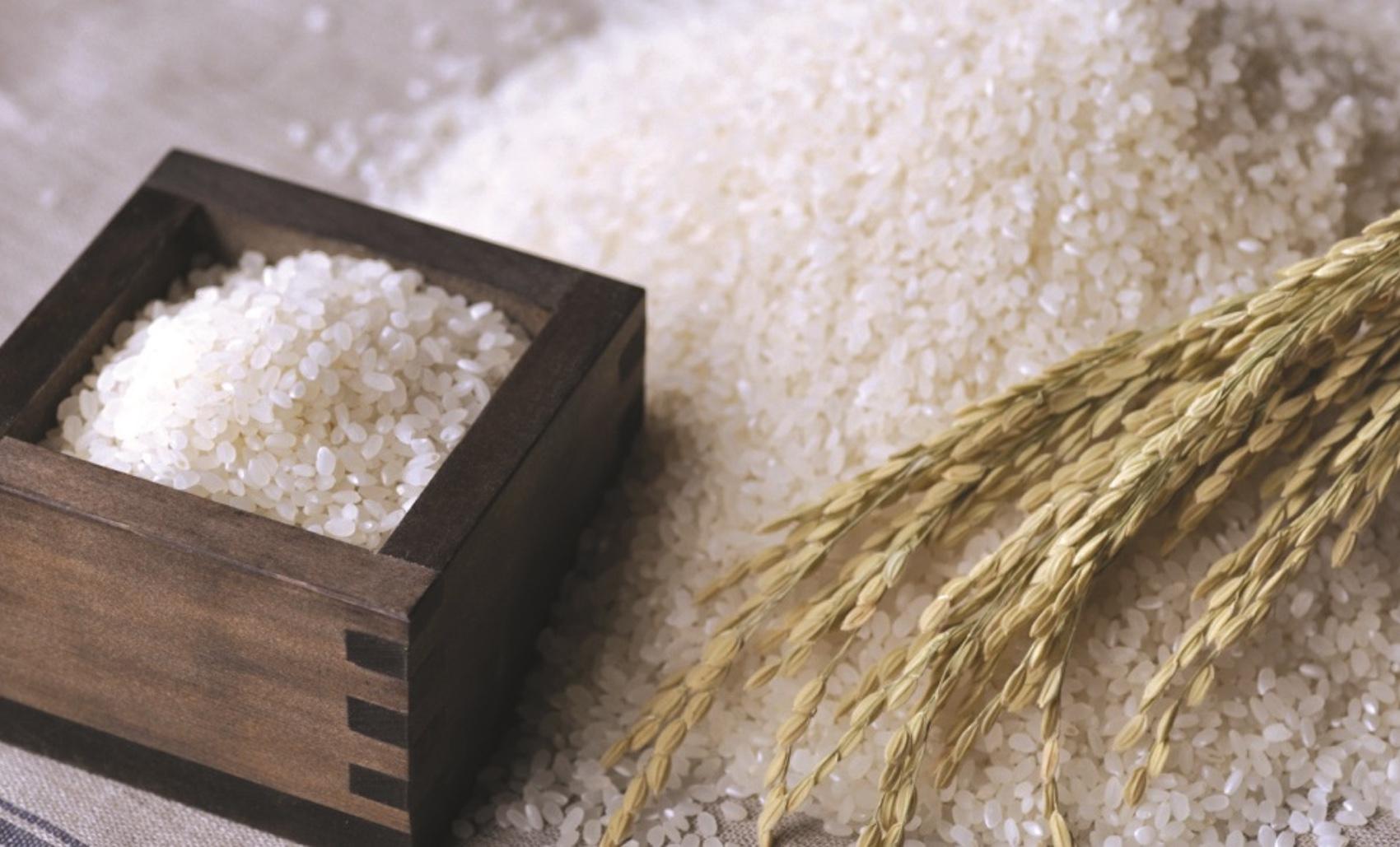 Tamaki Rice | Icrest International